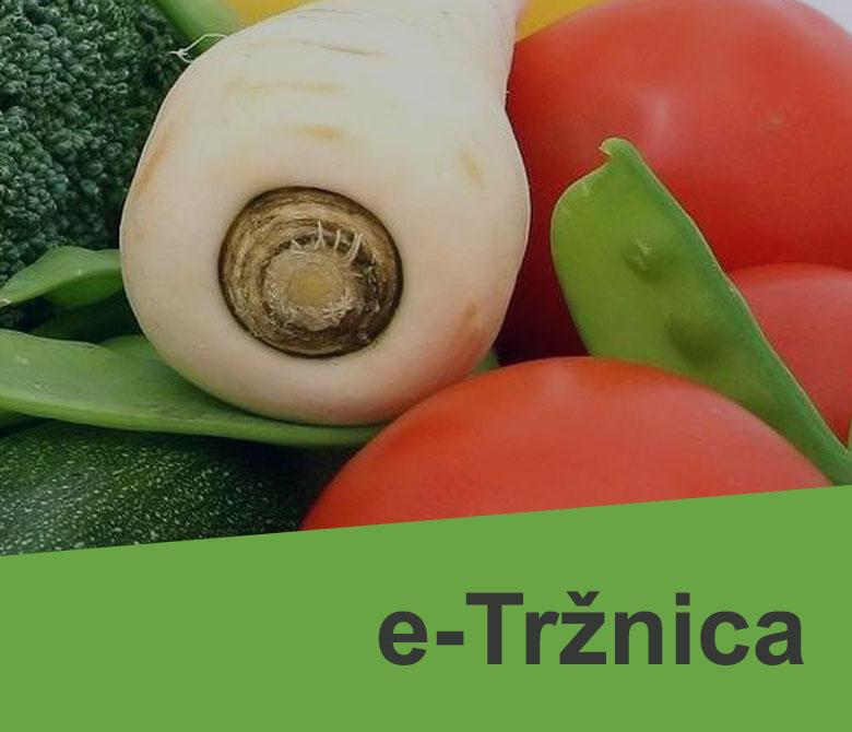 etrznica_1
